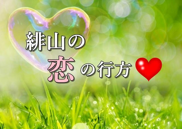 緋山の恋の行方