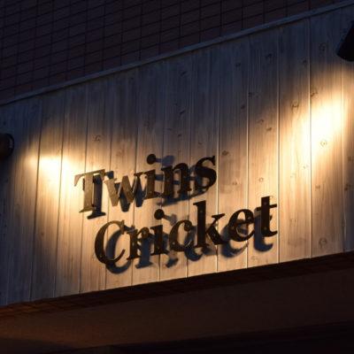 twins cricket