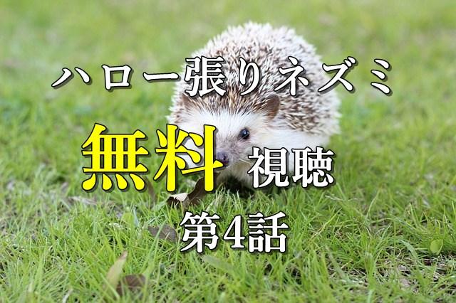 無料視聴4話